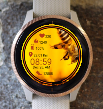 Garmin Watch Face - Bee