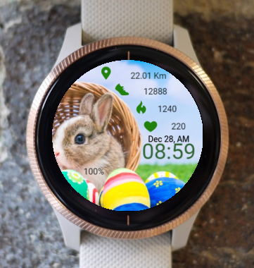 Garmin Watch Face - Easter Bunny 2