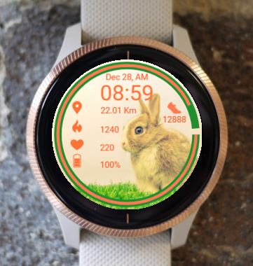 Garmin Watch Face - He Is A Bunny
