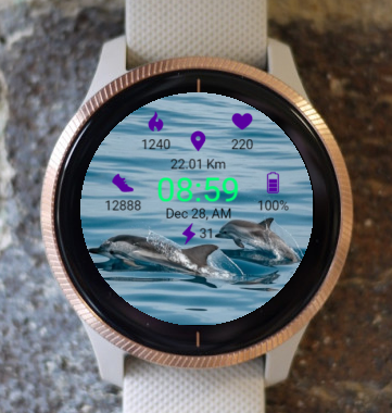 Garmin Watch Face - Wonderful  Dolphin