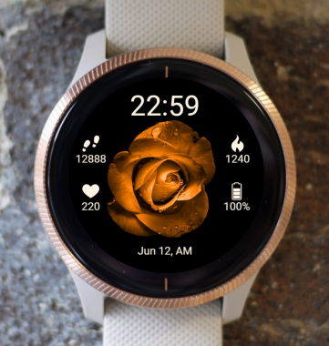 Garmin Watch Face - BW Flower 25
