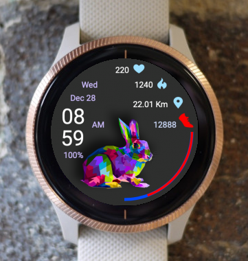 Garmin Watch Face - Pop Art Bunny