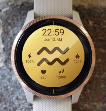Garmin Watch Face - Aquarius 2