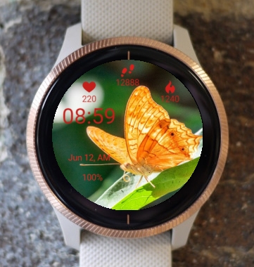 Garmin Watch Face - Orange Butterfly