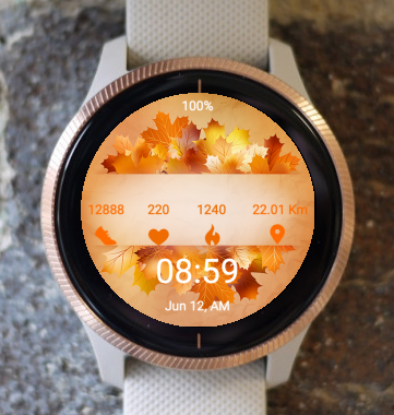 Garmin Watch Face - Autumn Line
