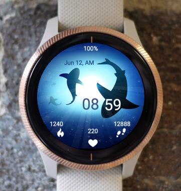 Garmin Watch Face - Circling