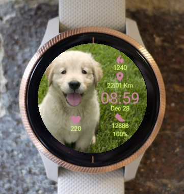 Garmin Watch Face - Hi Spring
