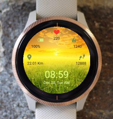 Garmin Watch Face - Green fields