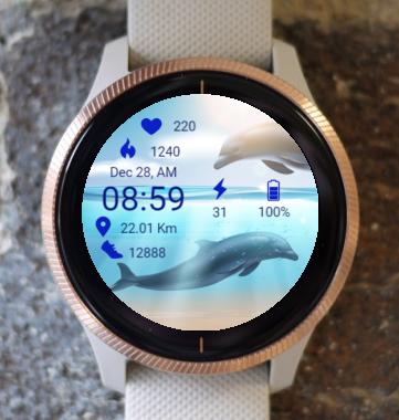Garmin Watch Face - Dolphins