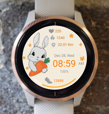 Garmin Watch Face - Vintage Cute Bunny