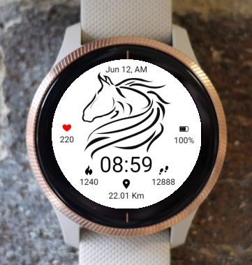 Garmin Watch Face - BW D204