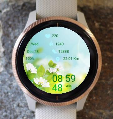 Garmin Watch Face - Spring Sunlight
