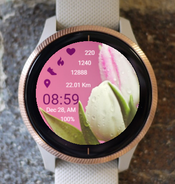 Garmin Watch Face - Spring With Tulips