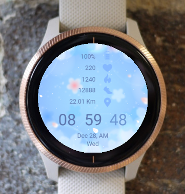 Garmin Watch Face - Blue Spring