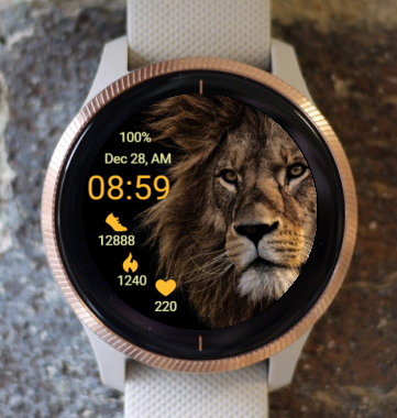 Garmin Watch Face - Ga King