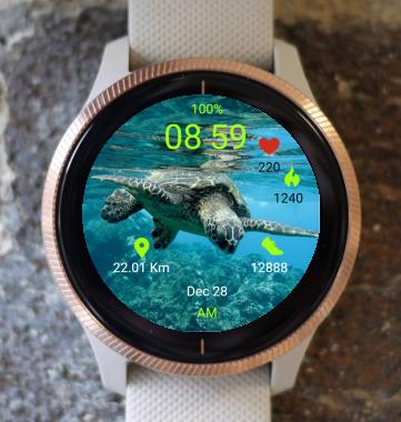 Garmin Watch Face - Turtle