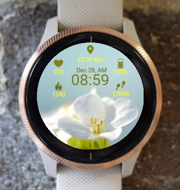 Garmin Watch Face - Spring Flower