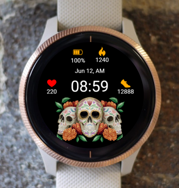 Garmin Watch Face - Dia Muertos 05