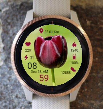 Garmin Watch Face - BR Tulip