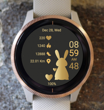 Garmin Watch Face - Gold Bunny