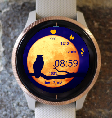 Garmin Watch Face - Owl