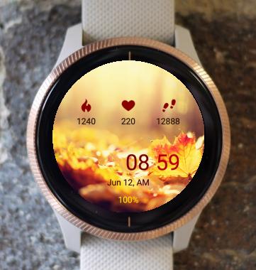 Garmin Watch Face - Autumn Lights