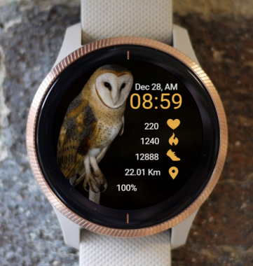Garmin Watch Face - Ga Owl